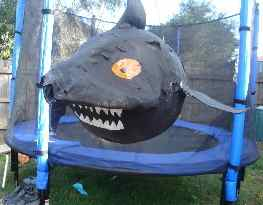The Impenetrable Shark